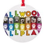 All WOOF All PLAY Ornament