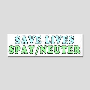 Save lives. Spay/neuter - Car Magnet 10 x 3