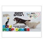 Snow Sprint WOOF Games 2014 Posters