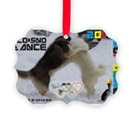 Slo-Sno Dance WOOF Games 2014 Ornament