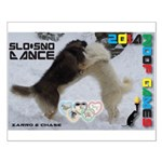 Slo-Sno Dance WOOF Games 2014 Posters