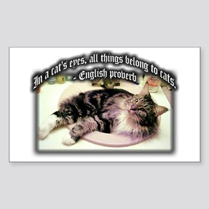 Cats Eyes Rectangle Sticker