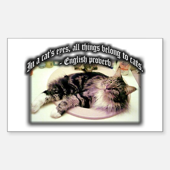 Cats Eyes Rectangle Decal