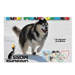 Snow-Shoeing WOOF Games 2014 Postcards (Package of
