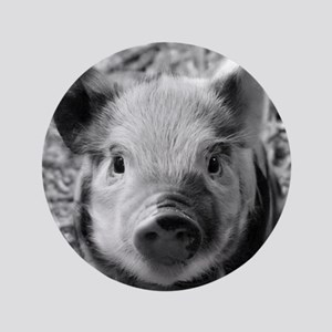 "Sweet Piglet,black white 3.5"" Button"