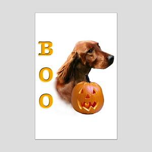Irish Setter Boo Mini Poster Print