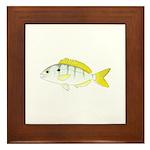 Pinfish Framed Tile