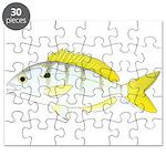 Pinfish Puzzle
