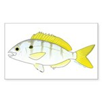 Pinfish Sticker