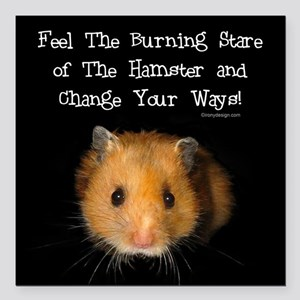 """The Hamster Square Car Magnet 3"""" x 3"""""""