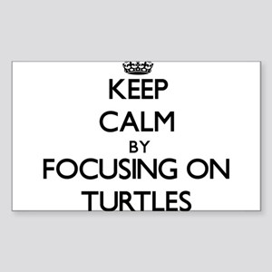 Keep Calm by focusing on Turtles Sticker