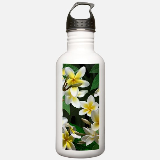Plumeria Flowers Water Bottle