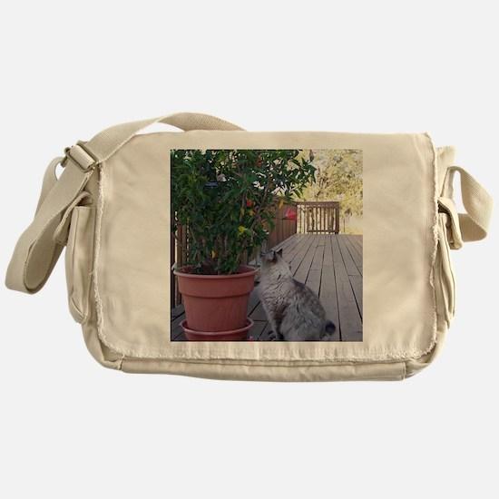 KoKo Messenger Bag