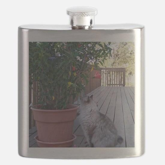 KoKo Flask