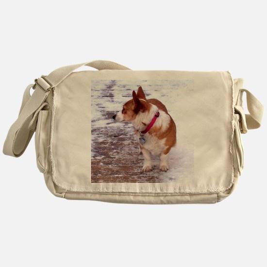 Honey Messenger Bag