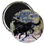 Success Begins With Trying Magnet