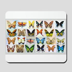 Bitterflies no text Mousepad