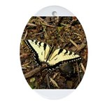 Summer Tiger Swallowtail Butterfly Ornament (Oval)