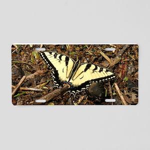 Summer Tiger Swallowtail Butterfly Aluminum Licens