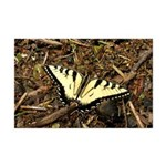 Summer Tiger Swallowtail Butterfly Posters