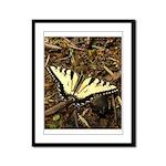 Summer Tiger Swallowtail Butterfly Framed Panel Pr