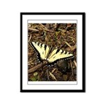 Summer Tiger Swallowtail Butterfly Framed Panel Pr