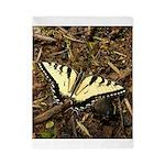 Summer Tiger Swallowtail Butterfly Twin Duvet