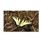 Summer Tiger Swallowtail Butterfly Rectangle Car M