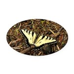 Summer Tiger Swallowtail Butterfly Oval Car Magnet