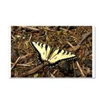 Summer Tiger Swallowtail Butterfly Car Magnet 20 x