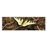 Summer Tiger Swallowtail Butterfly Bumper Sticker