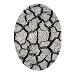 Cracked Mississippi River Ornament (Oval)