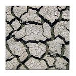 Cracked Mississippi River Tile Coaster