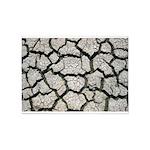 Cracked Mississippi River 5'x7'Area Rug
