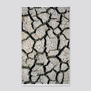 Cracked Mississippi River 3'x5' Area Rug
