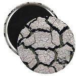 Cracked Mississippi River Magnets