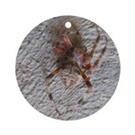 Crab Spider Home Ornament (Round)