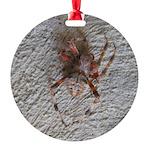 Crab Spider Home Ornament