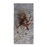 Crab Spider Home Beach Towel