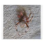 Crab Spider Home King Duvet