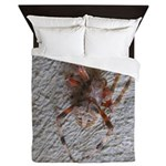 Crab Spider Home Queen Duvet