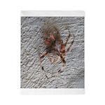 Crab Spider Home Twin Duvet