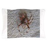 Crab Spider Home Pillow Case