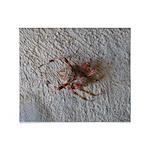 Crab Spider Home Throw Blanket
