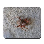 Crab Spider Home Mousepad