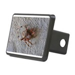 Crab Spider Home Hitch Cover