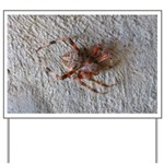 Crab Spider Home Yard Sign