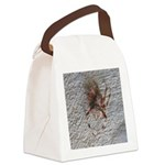 Crab Spider Home Canvas Lunch Bag