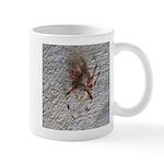 Crab Spider Home Mugs