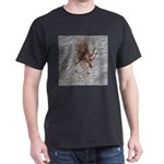 Crab Spider Home T-Shirt
